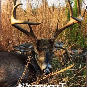 alabama hunting land for lease